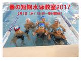春の短期水泳教室2017